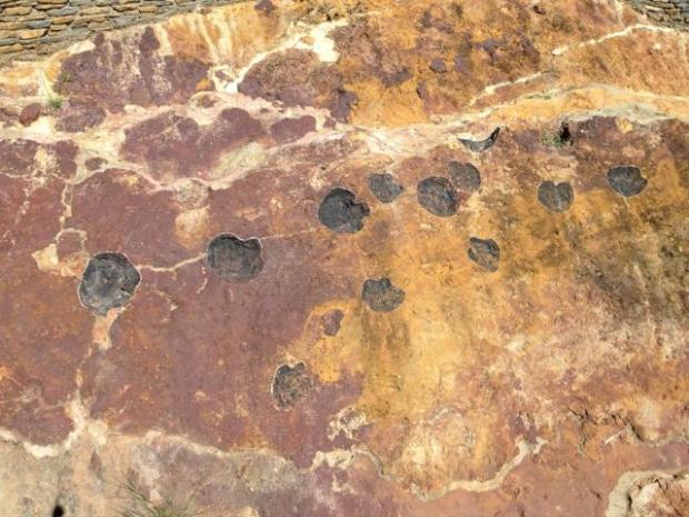 Retorn al Cretaci: Dinosaures d'Areny